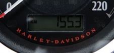 DSCF5658.JPG